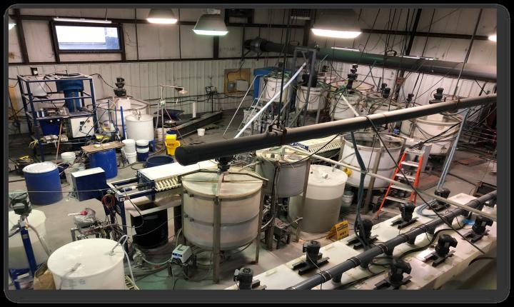 Figure 12 — University of Kentucky's Modular Pilot-Scale REE Separations Facility