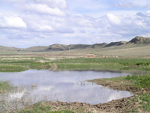 Wetland site created by surface discharge of CBNG product water.