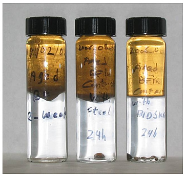 Two-phase (Soltrol 130/water) separation tests showing the effectiveness of surfactants in altering the wettability of crude oil-aged Bethany Falls (BF) rock exposed to surfactant solutions for 24 hours (left: No surfactant; center: STEOL CS-330; right: surfactin).