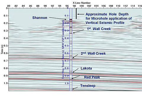 3-D seismic cross-section, Teapot Dome oilfield, Natrona County, WY.