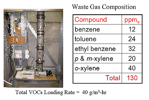Analysis of waste gas composition in the vapor-phase bioreactor.