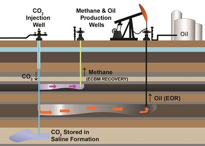 Diagram depicting ECBM and EOR recovery process by which CO2 is injected and used to drive the natural gas or oil towards a recovery well.