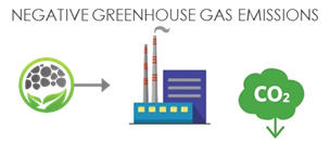 Negative Greenhouse Gas Emissions